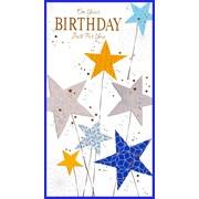 Simon Elvin Contemp Male Birthday Cards (25787)
