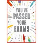 Simon Elvin Exam Pass Cards (26830)