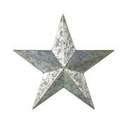 Apollo Star Wall Art Silver D410mm (810276)