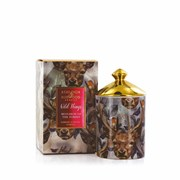Ashleigh & Burwood Wild Things Monarch Of Forest Candle Winter Forest (XWTCAN052