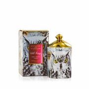 Ashleigh & Burwood Wild Things Owl Night Long Candle White Christmas (XWTCAN051)