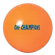 Bellco Cup Champion football Assorted 22.5cm (409)