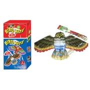 Palgrave Bird Kite Assorted 62x118cm (53689)