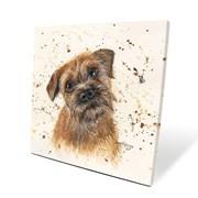 Buddy Box Canvas 40x40 (BXL40004)