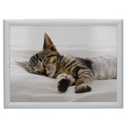 Creative Tops Ct Sleeping Kitten Laptray (5233655)