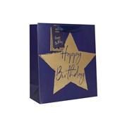 Design By Violet Blue Star Gift Bag Lge (DBVED-45-L)