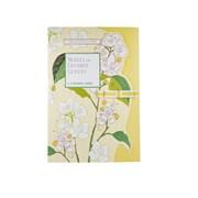 Neroli & Lime Leaves Fragranced Drawer Liners (FG7222)