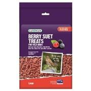 Gardman Grdmn Berry Suet Treat Lge 1.1kg (A04191)