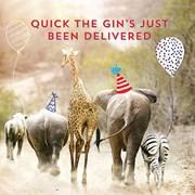 Safari Animal Friends Card (LL0086W)