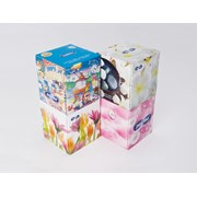 Paloma Cosmetic 3ply Tissue Box 60s (COST60)