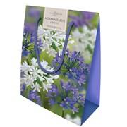 Agapanthus Gift Bag (SB02)