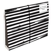 Spots & Stripes Expanding File 10part (SPKH)