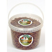 Supa Dried Mealworms 3lt Tub (SS823)