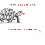 Valentines Day Turtley Amazing (SVI113W)