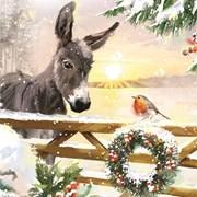 Christmas Cards Set B Festive Friends (X13263RCJP)