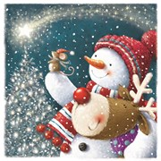 Christmas Cards Set B A Shooting Star (X13268RCJP)