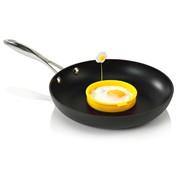 Zeal Egg Rings Asstd (J224DISP)